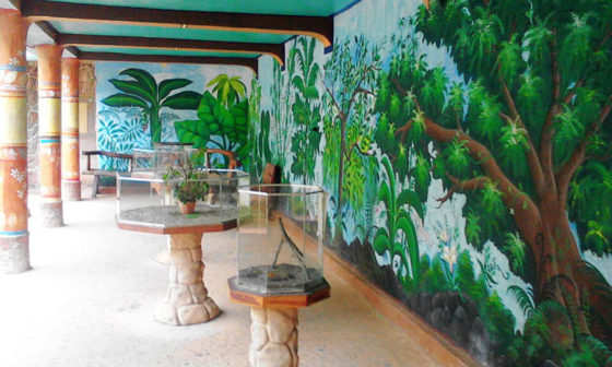 Live exhibits of scorpions, green-crested lizards, phasmid and mantises